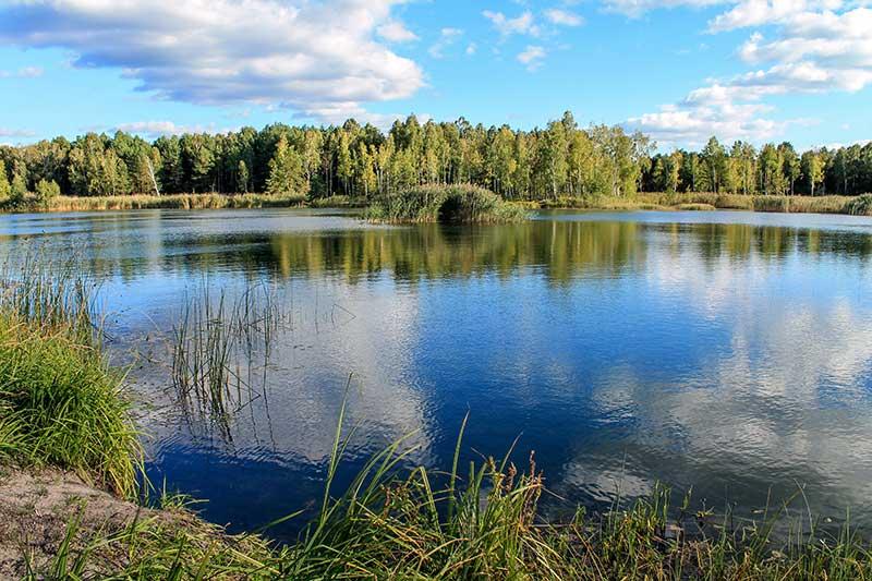 Фото: http://malepolisja.in.ua
