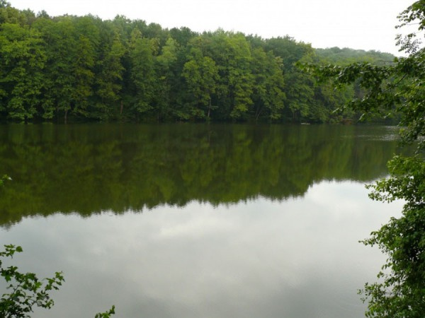 Шелехівське озеро