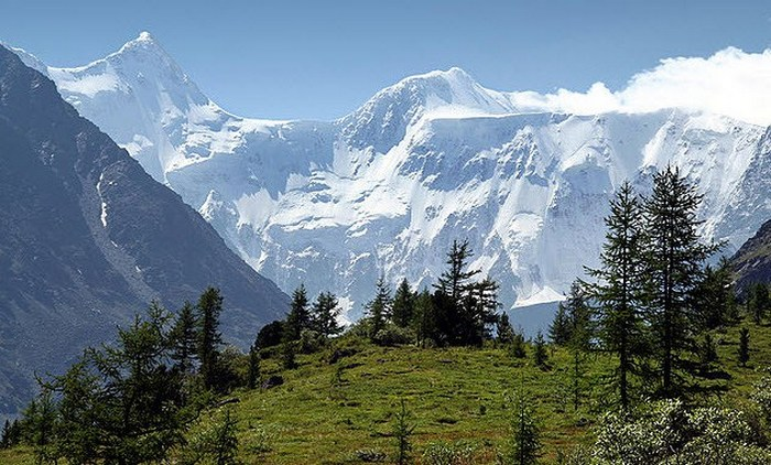Алтайські гори