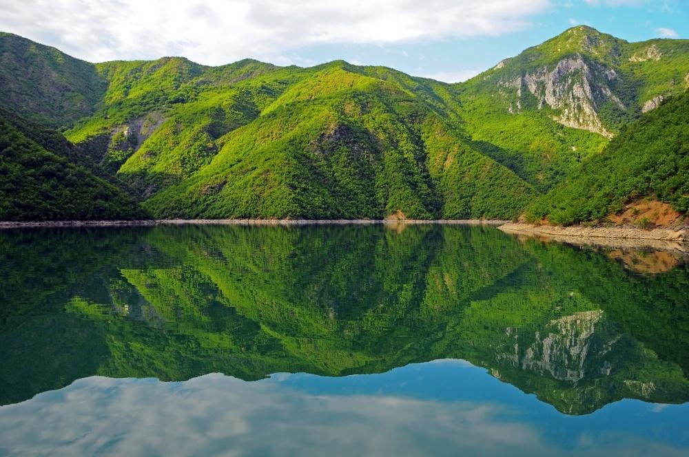 Коман, Албанія