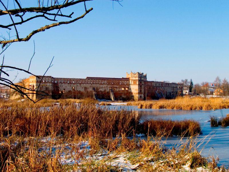 За́мок у Старо́му Селі́ (Старосі́льський за́мок) — пам'ятка архітектури XVI—XVII століть, розташована в селі Старе Село (Пустомитівський район, Львівська область).