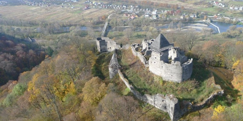 Не́вицький замок — напівзруйнований замок біля села Кам'яниця Ужгородського району Закарпатської області.