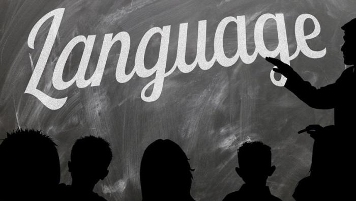 Фламандська, німецька та французька мови, поширені на території Бельгії.
