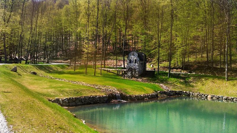Озеро Тур і старовинний водний млин, парк Шенборна, урочище Воєводино, Закарпаття