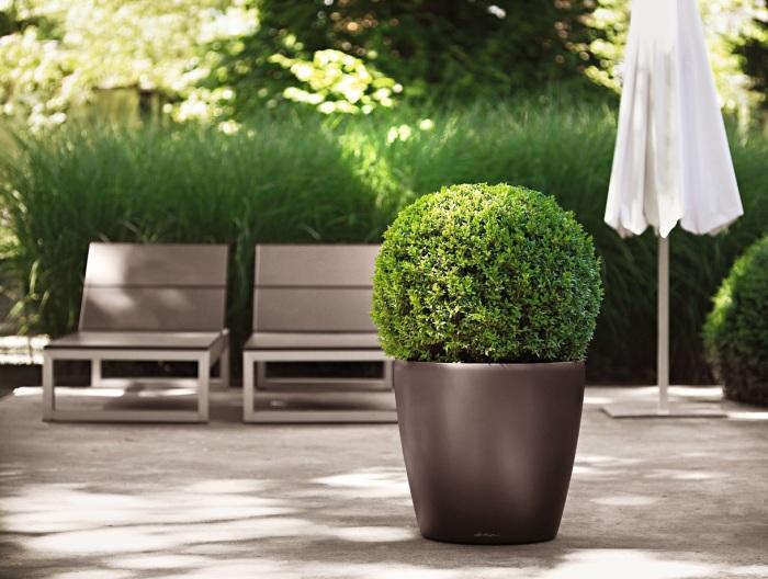 Невеликі матові кашпо - це відмінне декоративне рішення для будь-якого сучасного стилю ландшафтного дизайну.