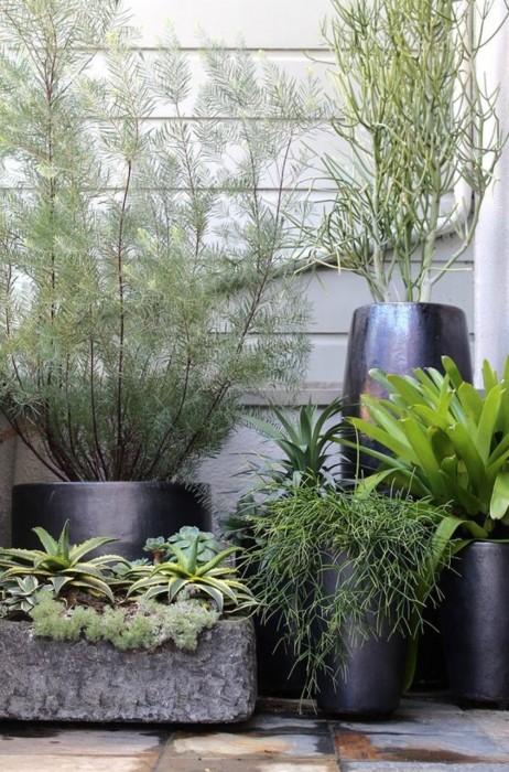 Досить популярною темою серед професійних дизайнерів є використання в ландшафтному дизайні великих декоративних кашпо для квітів і рослин.