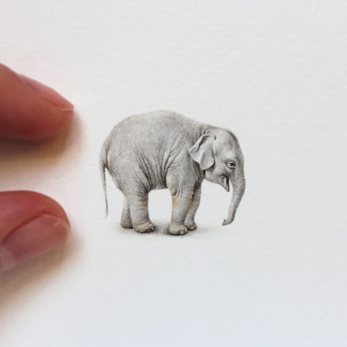 Слон. Автор: Julia Las.