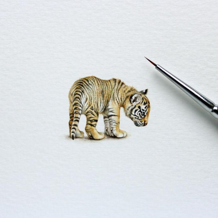 Тигр. Автор: Julia Las.