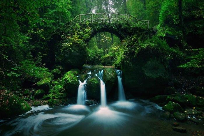 Лісовий міст біля міста Мюллерталь.